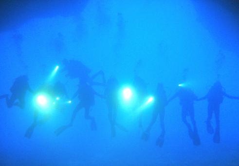 Divers Line Up #2